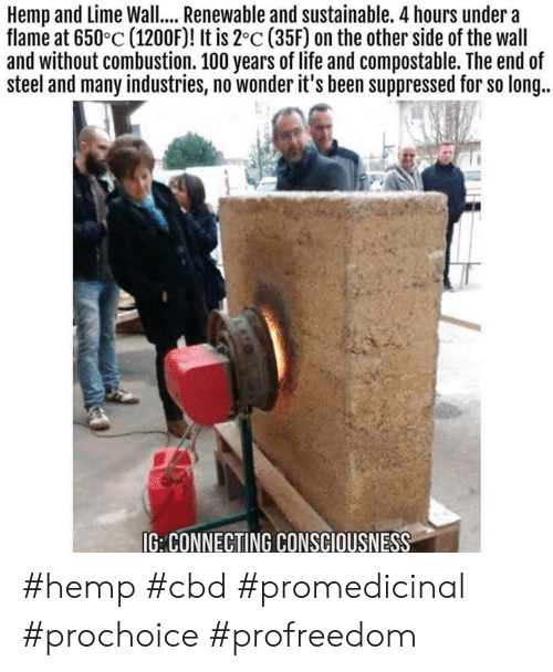 Other Side Of The Wall: Hemp and Lime Wall... Renewable and sustainable. 4 hours under a  flame at 650°c (1200F)! It is 2°c (35F) on the other side of the wall  and without combustion. 100 years of life and compostable. The end of  steel and many industries, no wonder it's been suppressed for so long..  G: CONNECTING CONSCIOUSNESS #hemp #cbd #promedicinal #prochoice #profreedom