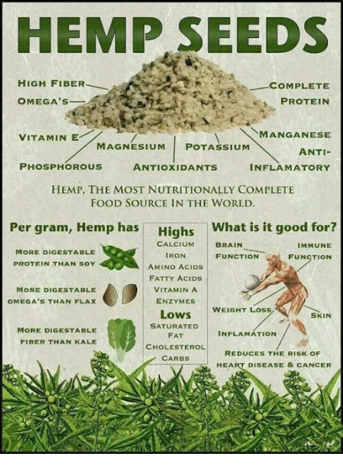 chia and hemp for weight loss