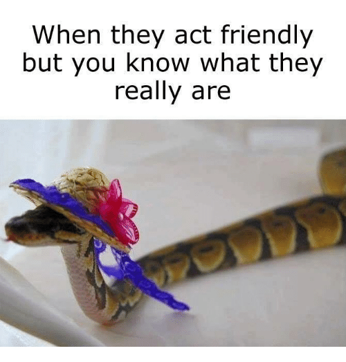 Memes, 🤖, and Act: hen they act friendly  but you know what they  really are