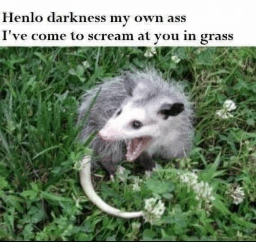 Henlo: Henlo darkness my own ass  I've come to scream at you in grass
