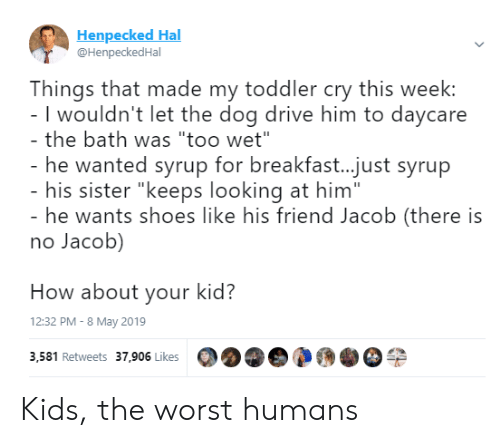 "hal: Henpecked Hal  @HenpeckedHal  Things that made my toddler cry this week:  I wouldn't let the dog drive him to daycare  the bath was ""too wet""  he wanted syrup for breakfast...just syrup  his sister ""keeps looking at him""  he wants shoes like his friend Jacob (there is  no Jacob)  How about your kid?  12:32 PM - 8 May 2019  3,581 Retweets 37,906 Likes Kids, the worst humans"