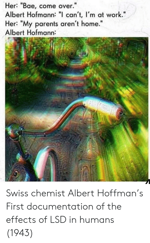 "lsd: Her: ""Bae, come over.""  Albert Hofmann: "" can't, I'm at work.""  Her: ""My parents aren't home.""  Albert Hofmann:  I1  It Swiss chemist Albert Hoffman's First documentation of the effects of LSD in humans (1943)"