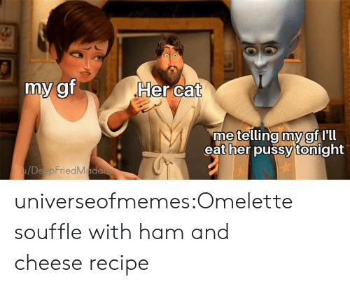 omelette: Her cat  my gf  metelling my gf Ill  eat her pussy tonight  /DeapFriedMada universeofmemes:Omelette souffle with ham and cheese recipe