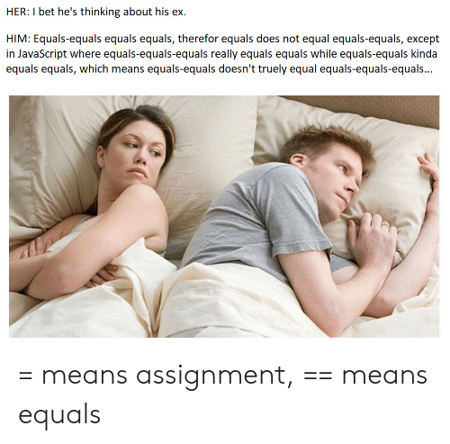 assignment: HER: I bet he's thinking about his ex  HIM: Equals-equals equals equals, therefor equals does not equal equals-equals, except  in JavaScript where equals-equals-equals really equals equals while equals-equals kinda  equals equals, which means equals-equals doesn't truely equal equals-equals-equals... = means assignment, == means equals