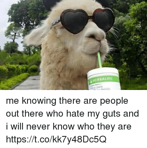 Funny, Herbalife, and Never: HERBALIFE. me knowing there are people out there who hate my guts and i will never know who they are https://t.co/kk7y48Dc5Q