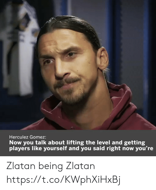 lifting: Herculez Gomez:  Now you talk about lifting the level and getting  you're  players like yourself and you said right now Zlatan being Zlatan  https://t.co/KWphXiHxBj