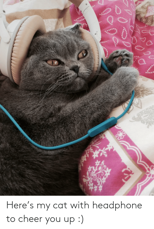 You Up: Here's my cat with headphone to cheer you up :)