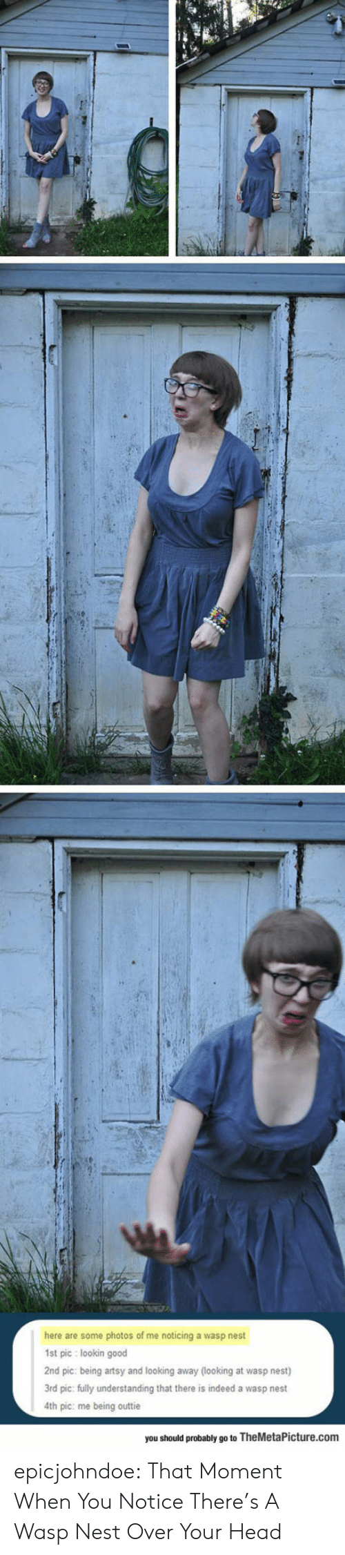 looking away: here are some photos of me noticing a wasp nest  1st pic lookin good  2nd pic: being artsy and looking away (looking at wasp nest)  3rd pic: fully understanding that there is indeed a wasp nest  4th pic: me being outtie  you should probably go to TheMetaPicture.com epicjohndoe:  That Moment When You Notice There's A Wasp Nest Over Your Head