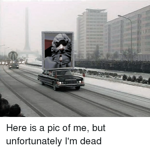 Anarchy, Dead, and Pic