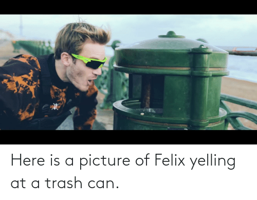 trash can: Here is a picture of Felix yelling at a trash can.