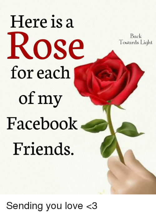 Facebook, Friends, and Love: Here is:a  Rose  Back  Towards Light  for each  of my  Facebook  Friends. Sending you love <3