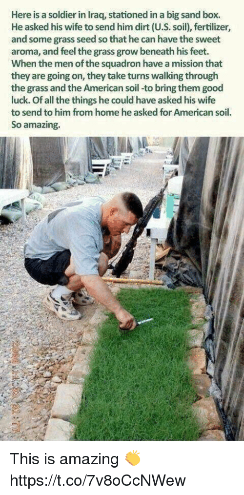 Memes, American, and Good: Here is a soldier in Iraq, stationed in a big sand box.  He asked his wife to send him dirt (U.S. soil), fertilizer,  and some grass seed so that he can have the sweet  aroma, and feel the grass grow beneath his feet.  When the men of the squadron have a mission that  they are going on, they take turns walking through  the grass and the American soil-to bring them good  luck. Of all the things he could have asked his wife  to send to him from home he asked for American soil.  So amazing. This is amazing 👏 https://t.co/7v8oCcNWew