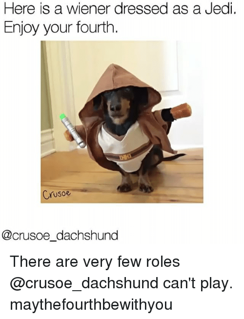 Jedi, Memes, and 🤖: Here is a wiener dressed as a Jedi.  Enjoy your fourth  Crusoe  (@crusoe dachshund There are very few roles @crusoe_dachshund can't play. maythefourthbewithyou