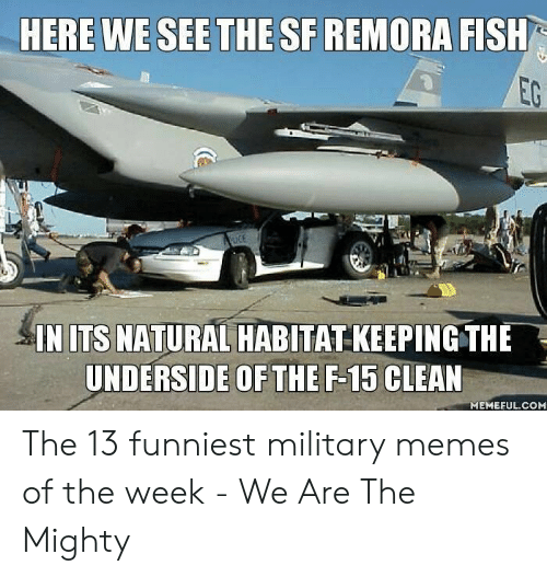 Funniest Military: HERE WE SEE THE SF REMORA FISH  EG  CE  IN ITS NATURAL HABITAT KEEPINGTHE  UNDERSIDE OFTHE F-15 CLEAN  MEMEFUL.COM The 13 funniest military memes of the week - We Are The Mighty