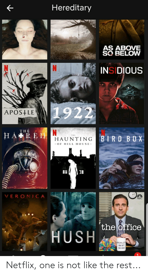 Facepalm, Netflix, and The Office: Hereditary  AS ABOVE  SO BELOW  N  INSIDIOUS  1922  APOS LE  N  THE  HARED  THE  BIRD BOX  HAUNTING  OF HILL HOUSE  VERON CA  NBC  the office  HUSH  WORLDS  BEST  BOSS Netflix, one is not like the rest...