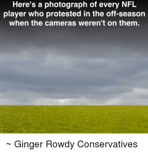 Rowdy: Here's a photograph of every NFL  player who protested in the off-season  when the cameras weren't on them. ~ Ginger  Rowdy Conservatives
