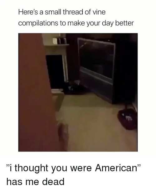 "American, Girl Memes, and Thought: Here's a small thread of vinee  compilations to make your day better ""i thought you were American"" has me dead"