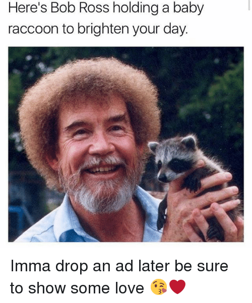 Love, Memes, and Bob Ross: Here's Bob Ross holding a baby  raccoon to brighten your day. Imma drop an ad later be sure to show some love 😘❤