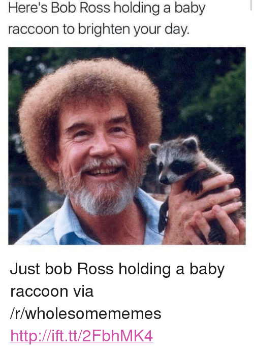 "Bob Ross, Http, and Raccoon: Here's Bob Ross holding a baby  raccoon to brighten your day. <p>Just bob Ross holding a baby raccoon via /r/wholesomememes <a href=""http://ift.tt/2FbhMK4"">http://ift.tt/2FbhMK4</a></p>"