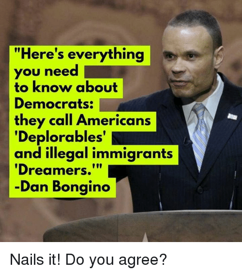 "Deplorables: ""Here's everything  you need 