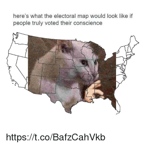 Conscience: here's what the electoral map would look like if  people truly voted their conscience https://t.co/BafzCahVkb