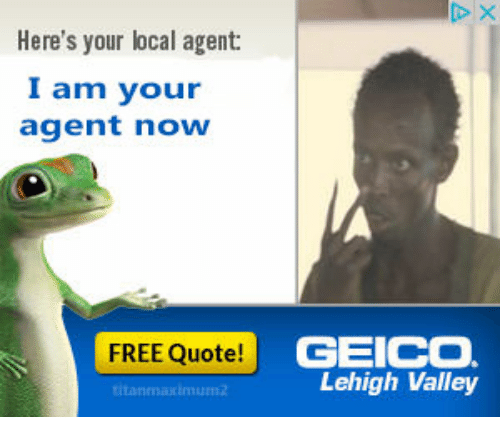 Geico Quote: 25+ Best Memes About Geico