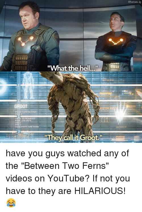 """Memes, Stem, and 🤖: @heroes ig  What the hell  OEM  GERPRI  GROOT  ACTIVATED  STEM  LORA edt assus-  ORIGIN: X  LENGTH 370 MICROBULES  WEIGHT 4258 GRET  LEGS: 2  ARMS: 2  ENHANCEMENTS NONE KNOWN  They callit Groot."""" have you guys watched any of the """"Between Two Ferns"""" videos on YouTube? If not you have to they are HILARIOUS! 😂"""