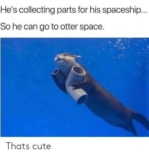 otter: He's collecting parts for his spaceship...  So he can go to otter space. Thats cute