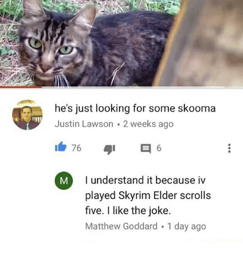 lawson: he's just looking for some skooma  Justin Lawson 2 weeks ago  76  E 6  I understand it because iv  played Skyrim Elder scrolls  five. like the joke.  Matthew Goddard 1 day ago