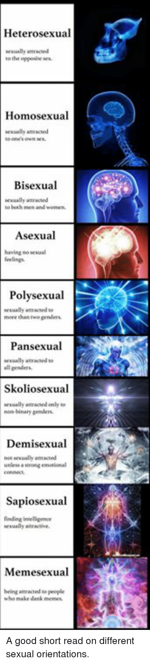 Dank, Memes, and Asexual: Heterosexual  to the oppositeex  Homosexual  exuly ameacted  Bisexual  exually attracsed  Asexual  having no sesa  feelings  Polysexual  esually atraced to  move thas two genders  Pansexual  esually attraceds  l genders  Skoliosexual  sesually attraced only  nos Nnary genders  Demisexual  not sesually wnacted  unless a sorong emotional  Sapiosexual  finding inselligence  exually atte  Memesexual  being amracted to people  who make dank memes A good short read on different sexual orientations.