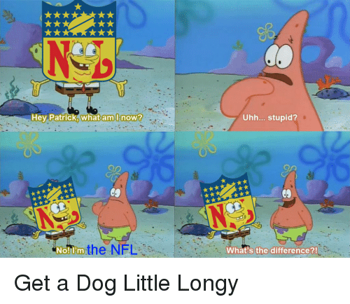 Whats The Difference: Hev Patrick, what am,l now?  Uhh... stupid?  Nolom the NFL  What's the difference?! Get a Dog Little Longy