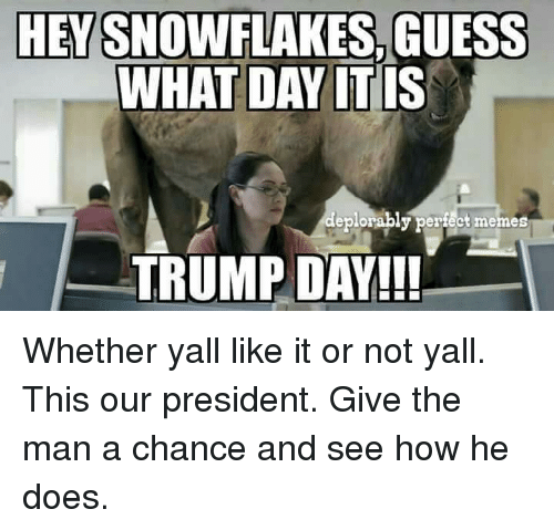 Donald Trump Vent Thread - Page 17 Hevsnowflakess-guess-what-day-it-is-eplorably-perfect-memes-trump-12603414