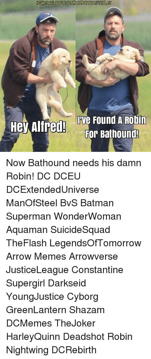 constantine: Hey Alfred!  Ive Found A Robin  For Bathound! Now Bathound needs his damn Robin! DC DCEU DCExtendedUniverse ManOfSteel BvS Batman Superman WonderWoman Aquaman SuicideSquad TheFlash LegendsOfTomorrow Arrow Memes Arrowverse JusticeLeague Constantine Supergirl Darkseid YoungJustice Cyborg GreenLantern Shazam DCMemes TheJoker HarleyQuinn Deadshot Robin Nightwing DCRebirth