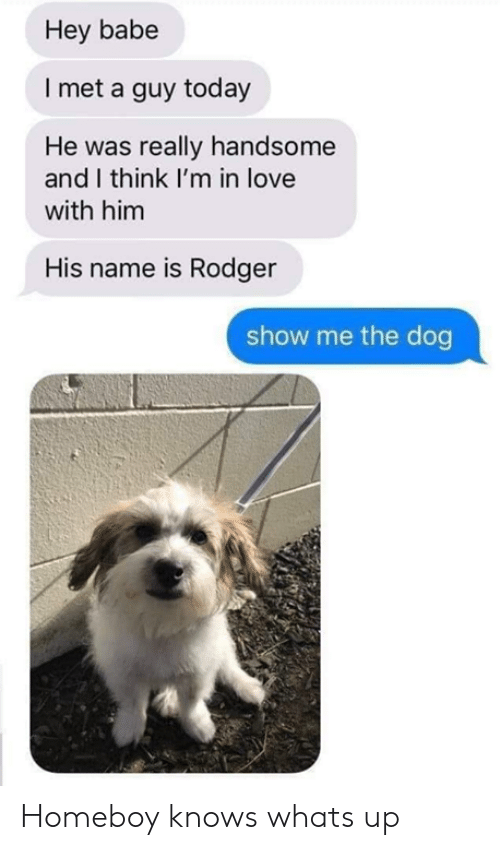 Im In Love: Hey babe  I met a guy today  He was really handsome  and I think I'm in love  with him  His name is Rodger  show me the dog Homeboy knows whats up