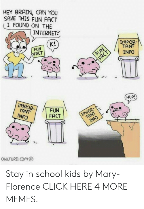 Tant: HEY BRAIN, CAN YOU  SAVE THIS FUN FACT  I FOUND ON THE  INTERNET?  K!  FUN  FACT  IMPOR-  TANT  INFO  FUN  FACT  IMPOR-  TANT  INFO  HUP!  FUN  FACT  7MPOR  TANT  INFO  OwLTURD.COm Stay in school kids by Mary-Florence CLICK HERE 4 MORE MEMES.