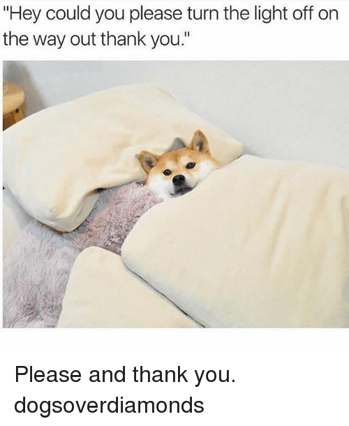 """Memes, Thank You, and 🤖: """"Hey could you please turnthe light off on  the way out thank you."""" Please and thank you. dogsoverdiamonds"""