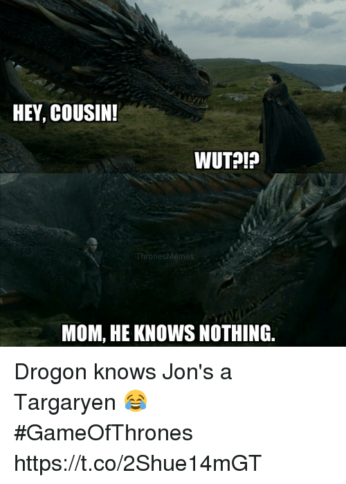 drogon: HEY, COUSIN  ThronesMemes  MOM, HE KNOWS NOTHING Drogon knows Jon's a Targaryen 😂 #GameOfThrones https://t.co/2Shue14mGT
