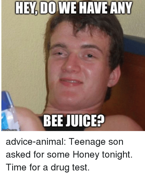 Drug Test: HEY DO WE HAVE ANY  BEE JUICE? advice-animal:  Teenage son asked for some Honey tonight. Time for a drug test.