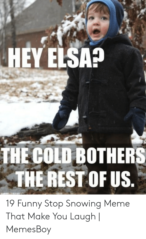 Stop Snowing: HEY ELSA?  THE COLD BOTHERS  THE REST OF US 19 Funny Stop Snowing Meme That Make You Laugh | MemesBoy