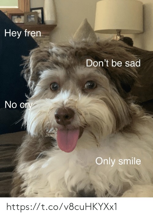 Fren: Hey fren  Don't be sad  No cry  Only smile https://t.co/v8cuHKYXx1