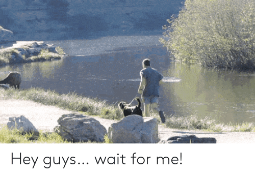 For, Hey, and Guys: Hey guys… wait for me!