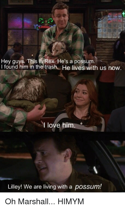 marshalls: Hey guys. This  is Rex He's a possum  I found him in the trash  He lives with us now  I love him  Lilley! We are living with a possum! Oh Marshall... HIMYM