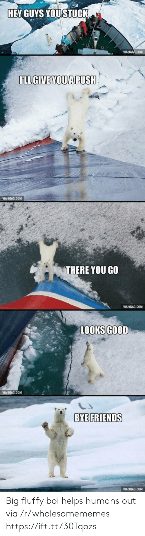Looks Good: HEY GUYS YOUSTUCK  VIA 9GAG.COM  LL GIVE YOUA PUSH  VIA 9GAG.COM  THERE YOU GO  VIA 9GAG.COM  LOOKS GOOD  VIA 9GAG.COM  BYE FRIENDS  VIA 9GAG.COM Big fluffy boi helps humans out via /r/wholesomememes https://ift.tt/30Tqozs