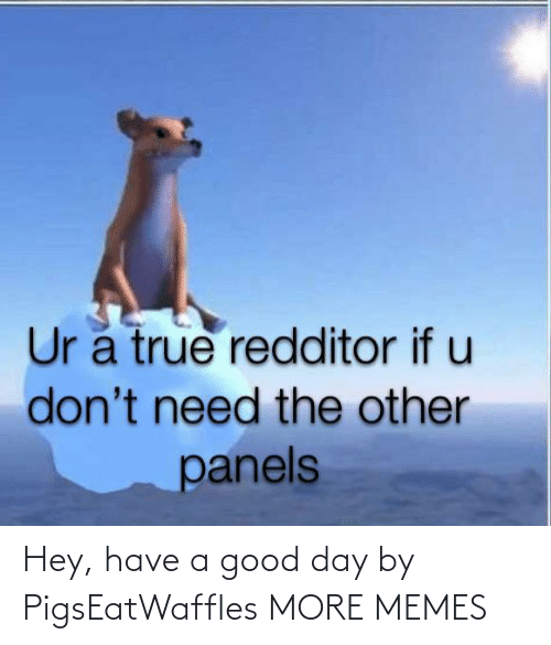 a-good-day: Hey, have a good day by PigsEatWaffles MORE MEMES
