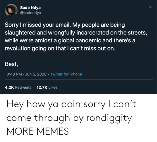 Dank, Memes, and Sorry: Hey how ya doin sorry I can't come through by rondiggity MORE MEMES