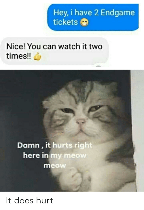 meow meow: Hey, i have 2 Endgame  tickets  Nice! You can watch it two  times!!  Damn, it hurts right  here in my meow  meow It does hurt