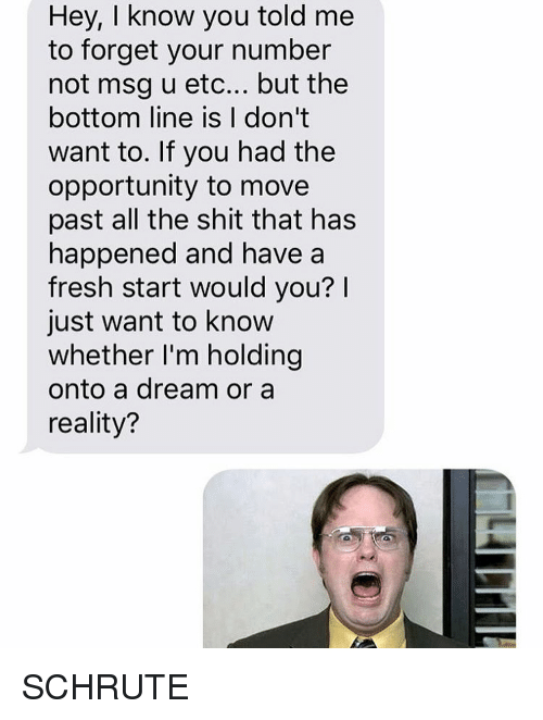 A Dream, Fresh, and Relationships: Hey, I know you told me  to forget your number  not msg u etc... but the  bottom line is I don't  want to. If you had the  opportunity to move  past all the shit that has  happened and have a  fresh start would you?  just want to know  whether I'm holding  onto a dream or a  reality? SCHRUTE