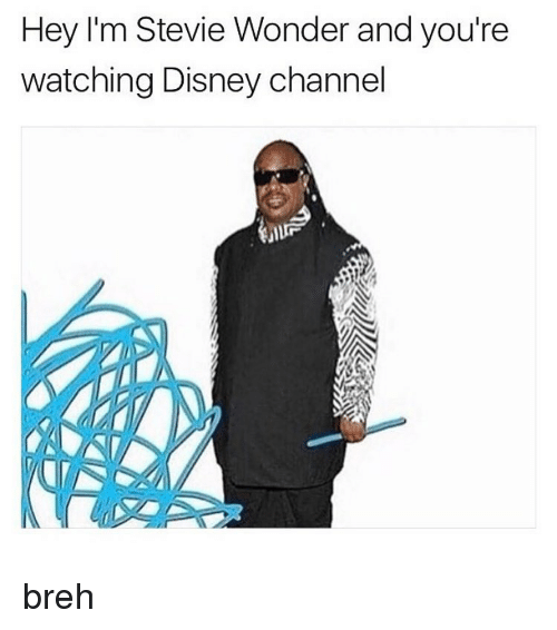 Disney, Memes, and Stevie Wonder: Hey I'm Stevie Wonder and you're  watching Disney channel breh