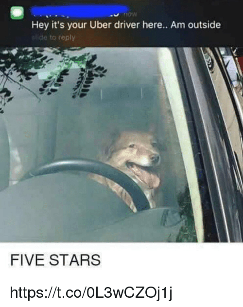Hey Its Your Uber Driver: Hey it's your Uber driver here.. Am outside  ide to reply  FIVE STARS https://t.co/0L3wCZOj1j