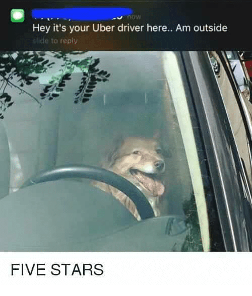 Memes, 🤖, and Driver: Hey it's your Uber driver here.. Am outside  slide to reply  FIVE STARS